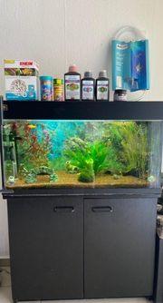 Juwel Aquarium 120l mit Zubehör