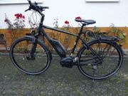 E Bike Herren Trekking mit