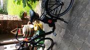 Prophete City E Bike
