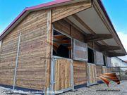 Aussenboxen Pferdestall Pferdestall bauen Pferdeboxen