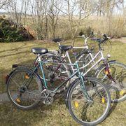 Fahrräder - drei auf einen Streich