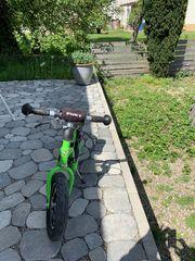 Pucky Laufrad de Luxe XL