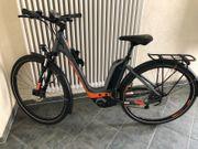 e bike Firma Bergamont Farbe