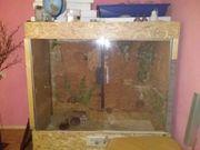grosses terrarium reptilien 2m lang