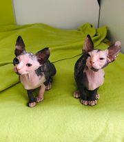 Zwei Kleine Kitten weiblich suchen