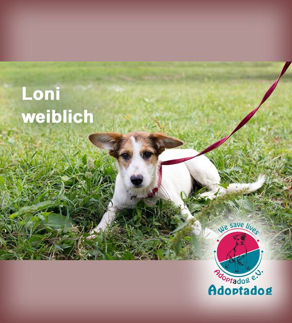 Loni - ist ein süßes Mädchen