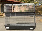 XXL Doppeldecker Meerschweinchen Hasen Käfig