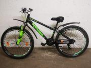 MTB Mountainbike Capriolo 26 Zoll