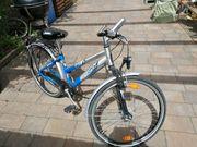 Fahrrad mit Rücktritt Pegasus