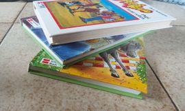 Bibi und Tina Papi lernt: Kleinanzeigen aus Bregenz - Rubrik Kinder- und Jugendliteratur