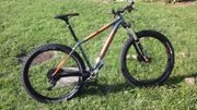 CANONDAIL Mtb Beast of the