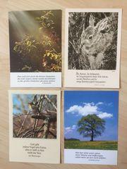 4 Ansichtskarten Fotokunst Groh München