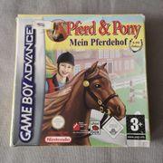 Pferd und Pony in OVP