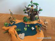 Playmobil Safari