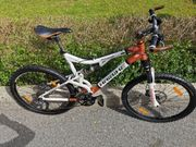 mountainbike Haibike