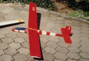 MODELLBAUSET 2x RC Segelflieger Fernsteuerung