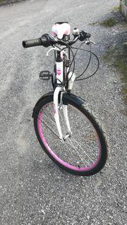 Fahrradsammlung Auflösung