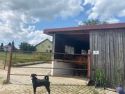 Offenstall Pferdebox Pferdestall Einstellplatz
