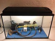 Aquarium 63 Liter