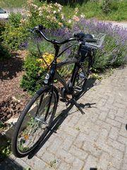 Adore Versailles City Herren E-Bike