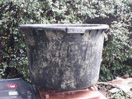 Sonstiges für den Garten, Balkon, Terrasse - Kübel Blumenkübel Topf riesengroß Kunststoff