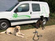 Gassiservice Tierpension mobile Tierbetreuung