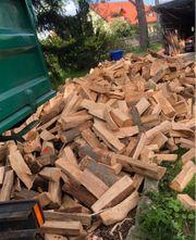 Brennholz - Hartholz Buche Eiche oder Birke