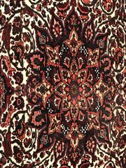 handgeknüpfter Perserteppich Bakhtiar - 300 x