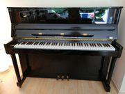 Klavier Euterpe Bechstein-Gruppe