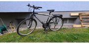 Trekking-Bike Kreidler super Ausstattung