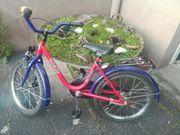 Fahrrad Kinder Kinderfahrrad 58cm hoch