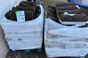 Rollrasen günstig in Ludwigshafen abzugeben