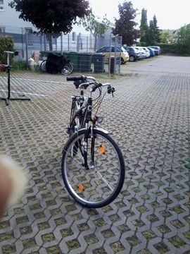Bild 4 - Herren Trekkingrad - Rülzheim