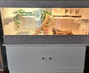 Terrarium 120 x60 x60 Inklusive