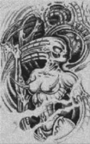 Vorlage für Ministeck Dämonenfrau 60x100cm