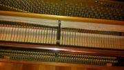 Akustisches Klavier SAUTER MADE IN