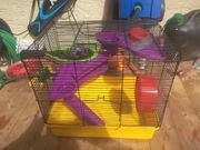 Mäuse Käfig