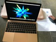 Apple MacBook gold 12 Zoll