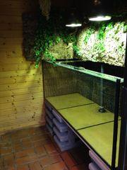 Hochwertiges großes Aquarium Terrarium 160