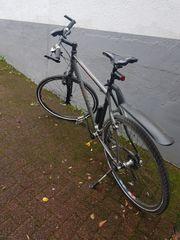KTM Herrenrad
