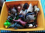 Tiere mix Kiste