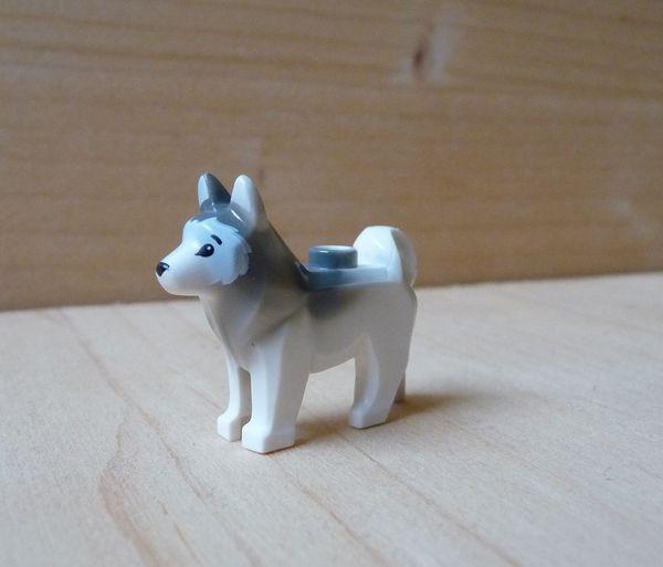 Lego Hund Husky