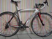 Bike Wilier Cento Campangnolo Grösse