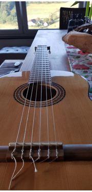 Akustik Konzert Gitarre Master Serie