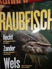 Raubfisch-Angelzeitung
