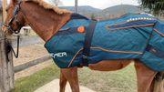 Bemer Horse Set - Deckenset