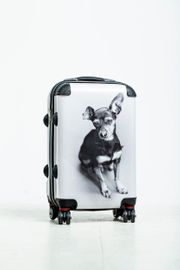 Hartschalenkoffer Zwergpinscher Rehpinscher Trolley Koffer