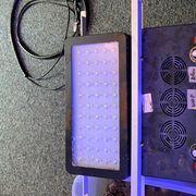 2x Meerwasser LED Chinakiste