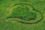 Reico Vital Systeme Boden Pflanzen