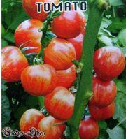 10 Tomatensamen Red Baikal Nini